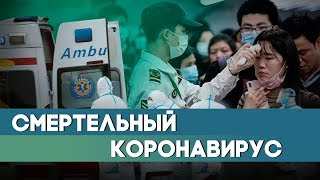 Смертельный коронавирус: пока в Китае – где еще?