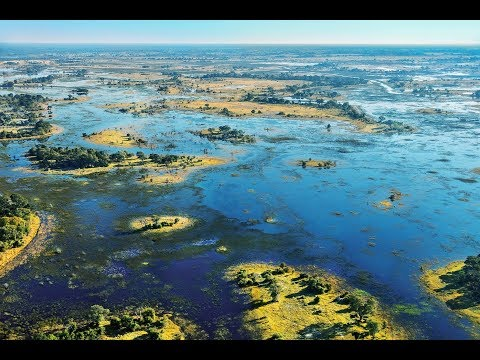 explore-the-watery-wilderness-of-the-okavango-delta-with-us
