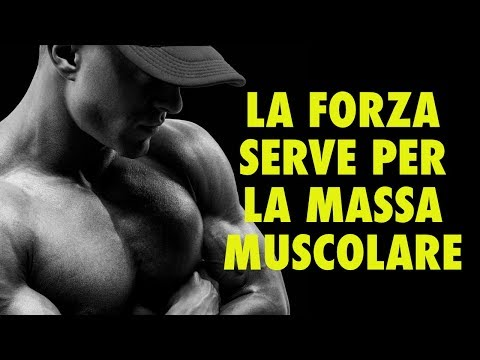 PERCHE' LA FORZA SERVE PER FARE MASSA MUSCOLARE