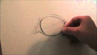 How to draw a horse eye