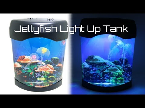 Unboxing Jellyfish Aquarium Night Light Up Tank