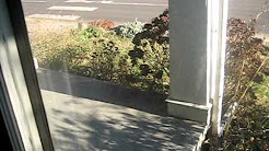 Hawthorne Home  for Rent Portland Oregon