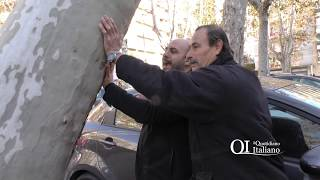 Bari, in bilico o scherzo della natura? Antonio e Nicola aspettano la risposta sotto l'albero