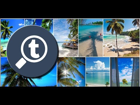 d68df7cc3 Photo   Video Explorer and Downloader for Tumblr - Apps on Google ...