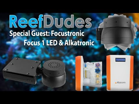 Special Guest Focustronic with an innovative new product: Focus 1 and Alkatronic!