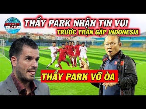 Tin Bóng Đá Việt Nam 12/10: ĐT Việt Nam đón tin vui trước trận gặp Indonesia