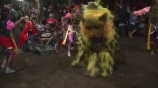 Video Macan Barong Sekar Budaya dan penari Jaran Kepang download MP3, 3GP, MP4, WEBM, AVI, FLV Juli 2018