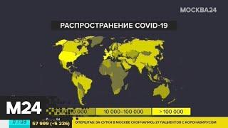 Более 2,47 миллиона случаев заражения COVID-19 зафиксировано в мире - Москва 24