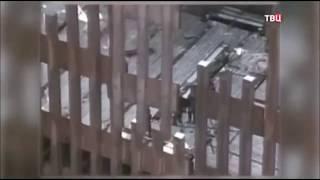 2017.06.19 Трамп - Башни близнецы были заминированы изнутри  ТВЦ