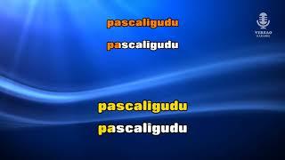 ♫ Demo - Karaoke - TREM DAS ONZE - Popular Brasil