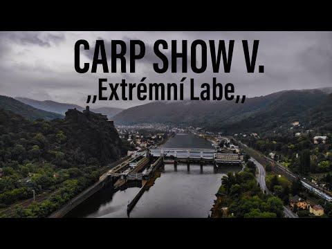 CARP SHOW V.