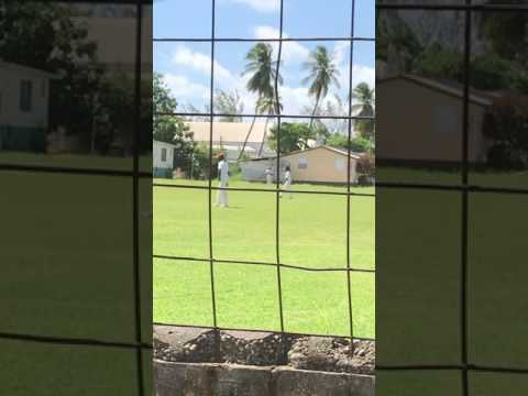 The real real Barbados