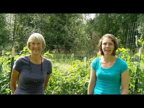 Terry Reichardt's Garden – In the Alaska Garden with Heidi Rader