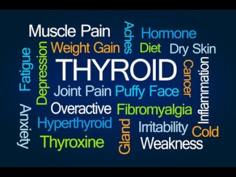 Low Thyroid- How Low T3 Causes Weight Gain, Fatigue and Brain Fog-Dr Hagmeyer Video