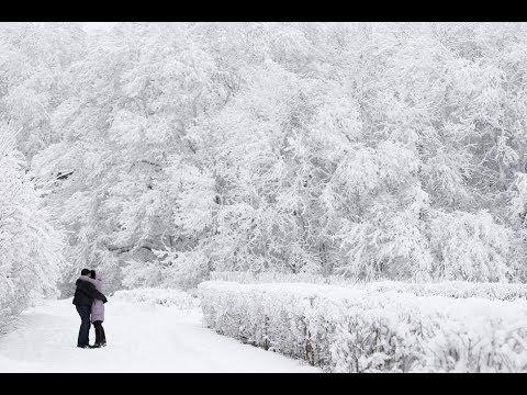 Самый сильный снегопад в Москве за 130 лет ❄ Snow Paradise of Moscow Lapland❄