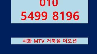 시화 MTV 거북섬 더오션 수변상가