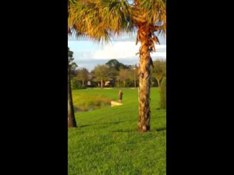 Realtor Valentina at Evergreen by Wci 12018384838