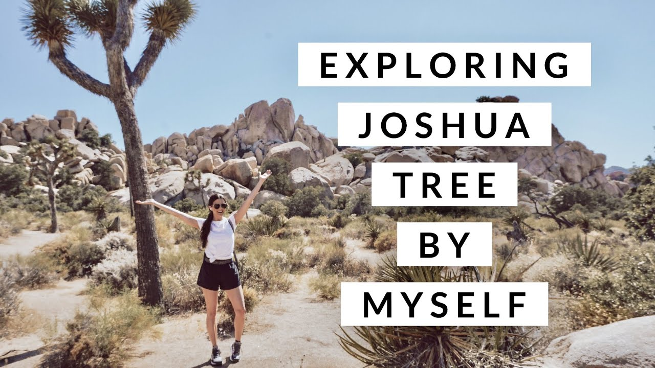 Vlog: A Day in Joshua Tree National Park