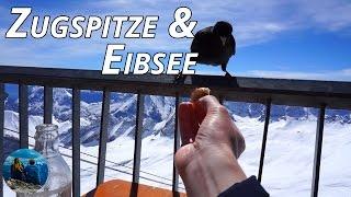 Fahrt auf die Zugspitze   Wandern um den Eibsee   Garmisch-Partenkirchen