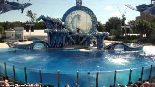 Blue Horizons Dolphin Show at SeaWorld Orlando