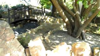 Aom - Sb House- Backyard Bridge