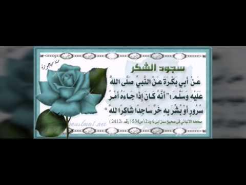 سنن نبينا محمد صلى الله عليه  وسلم