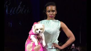 Гламур и благотворительность  на Нью Йоркской неделе моды на подиум вышли бездомные собаки