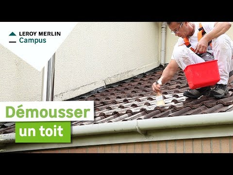 Comment Démousser Un Toit Leroy Merlin Youtube