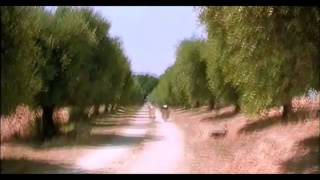 Great Italian Comedy - What Time Is It - Donkey balls and time - Only in Italy