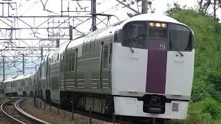 中央線豊田⇒八王子を走行する215系ホリデー快速ビューやまなし
