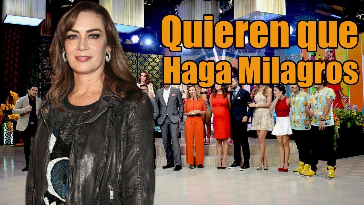 Anette Michel Descuidos hunden a venga la alegría con ingreso de anette michel