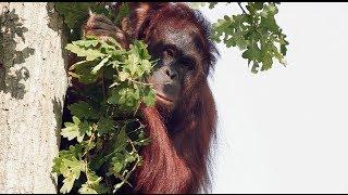 Zoo Rostock - Der größte Zoo an der deutschen Ostseeküste