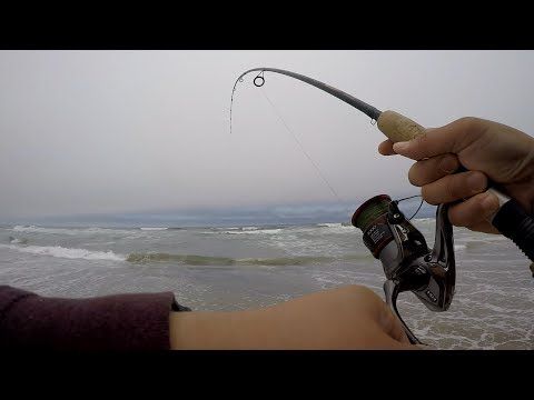 Central Coast Surf Fishing