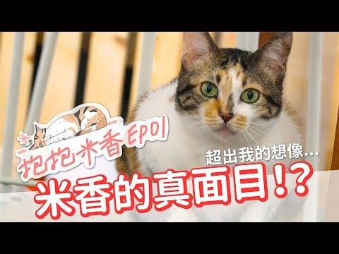 【抱抱米香EP1】米香的真面目!原來米香私底下...