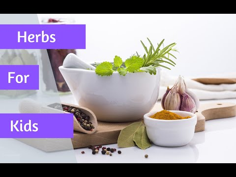 Healing Herbs for Kids - the Facts and Benefits