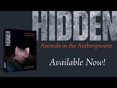 Joaquin Phoenix-Backed Groundbreaking Book 'Hidden' Debuts Today