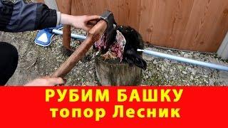 Рубим башку. Топор Лесник. Компания Русский булат.(, 2017-05-07T15:03:42.000Z)
