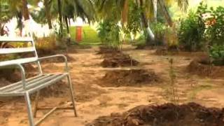 Best Farm House Sellers in coimbatore - Winners India City Developers