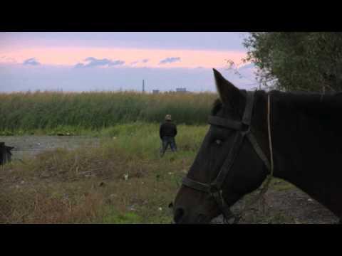 POSTCARD FROM SOMOVA, ROMANIA - trailer