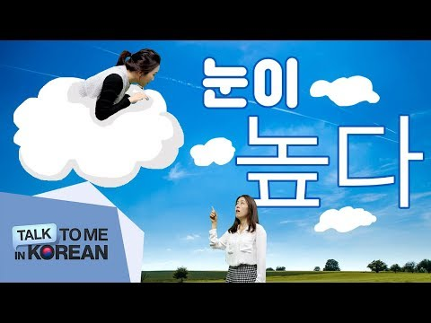 Intermediate Korean Lesson - 눈이 높다