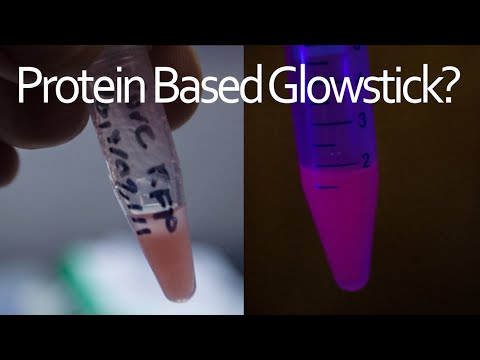 Fluorescent Protein Glowstick? - Extracting Red Fluorescent Protein Using Ultrasound