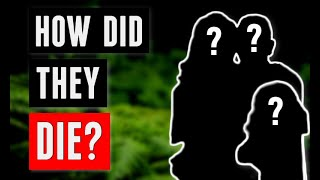 The Disturbing Mystery of the Jamison Family   What Happened to Them?