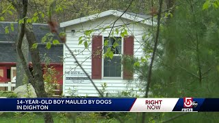 14-year-old boy mauled to death while taking care of animals identified