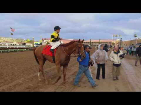 Ring Weekend Seeks Dixie Stakes Win