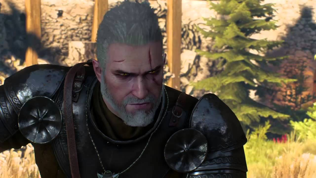 the witcher 3 porn