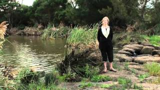 Liara Covert- Is Mother Earth a Conscious Being?