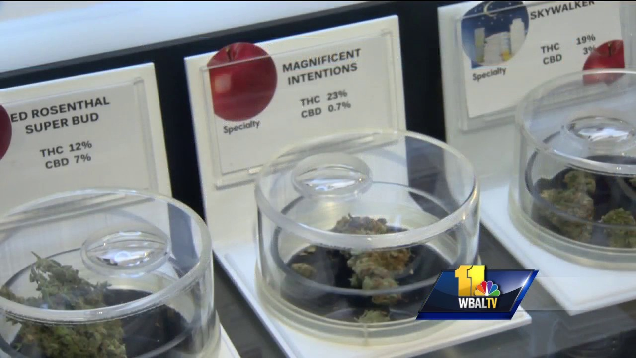Maryland approves first medical marijuana dispensary