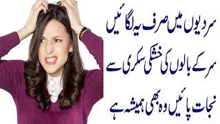 Hair Dandruff Treatment in Winter Papaya Mask for Hair Dandruff Treatments in Urdu Beauty Hair Tip