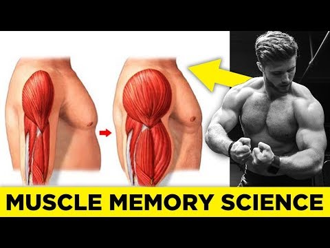 How To Use Muscle Memory To Re-Build Lost Muscle (Science Explained)