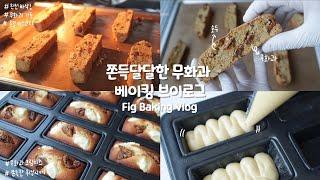 ✨쫀득하고 달달한 무화과 베이킹 브이로그!✨ | Fig…